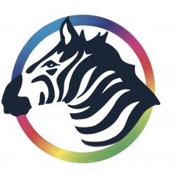 ZePrA Basic with Expert DL Profiles