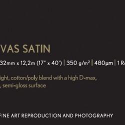"Epson Premium Canvas Satin - 24"" x 12.2m roll"